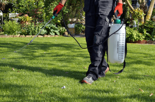 Lawn Pest Control Salt Lake City, UT